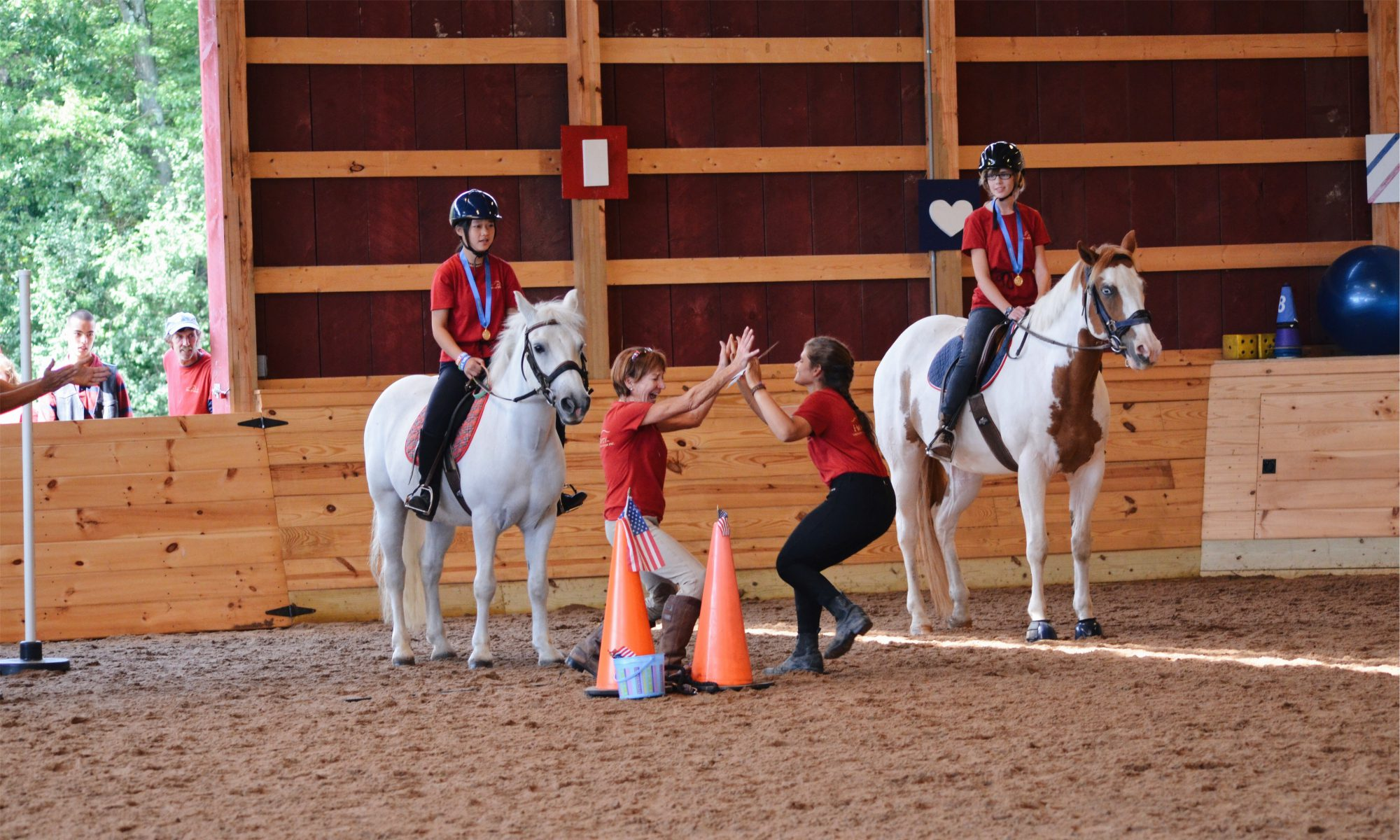 High & Mighty Therapeutic Riding and Driving Center, Inc. 501 (c)(3)